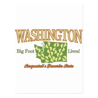 Washington State - Bigfoot Lives! Post Cards