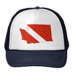 Washington State Dive Flag Cap