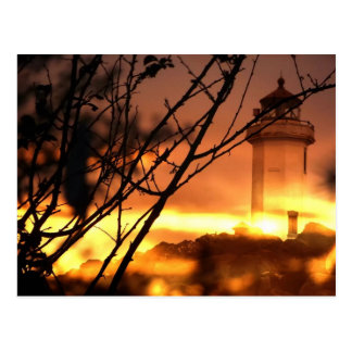 Washington State Postcard- Lighthouse at Sunset Postcard