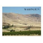 Washington State Vineyards Travel Photo Postcard