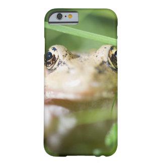 Washington, USA 2 Barely There iPhone 6 Case