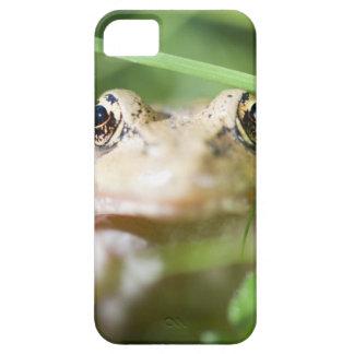 Washington, USA 2 iPhone 5 Case