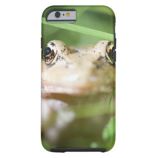 Washington, USA 2 Tough iPhone 6 Case