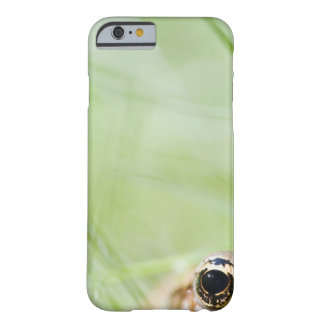 Washington, USA Barely There iPhone 6 Case