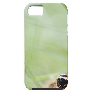 Washington, USA iPhone 5 Cases
