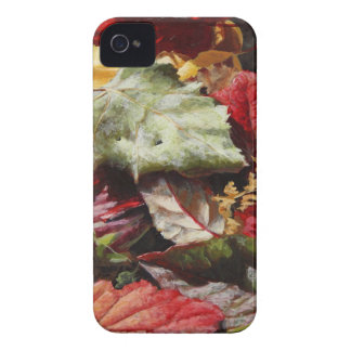 Wasilla Leaves - Alaskan Autumn Leaf Camouflage iPhone 4 Case-Mate Cases