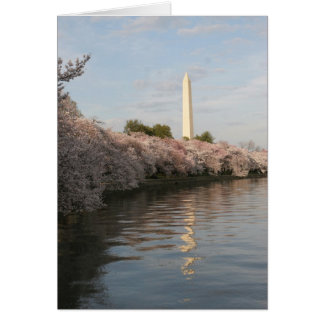wasington monument cherry blossom greeting card