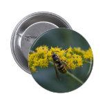 Wasp Button
