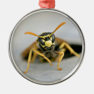 Wasp emerging from its hole christmas ornament