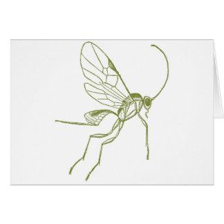 Wasp, Meteorus Hyphantria Card