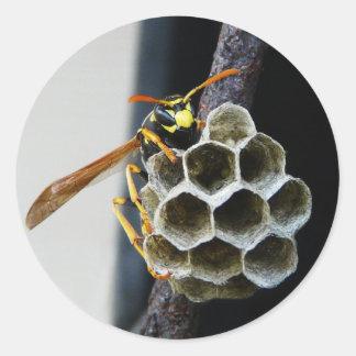 Wasp Nest and Worker Classic Round Sticker