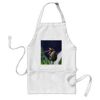 wasp on flower standard apron