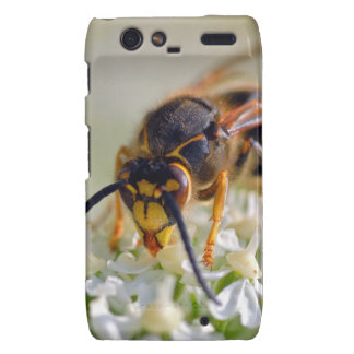 Wasp on white flower droid RAZR cover