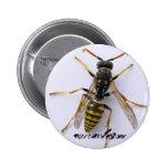 wasp pins