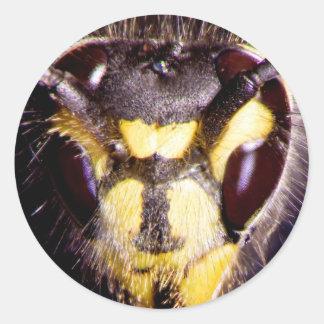 Wasp Round Sticker