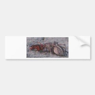 Wasp&Spider Car Bumper Sticker