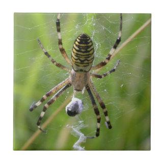 Wasp Spider in web Ceramic Tile
