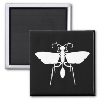 Wasp Square Magnet