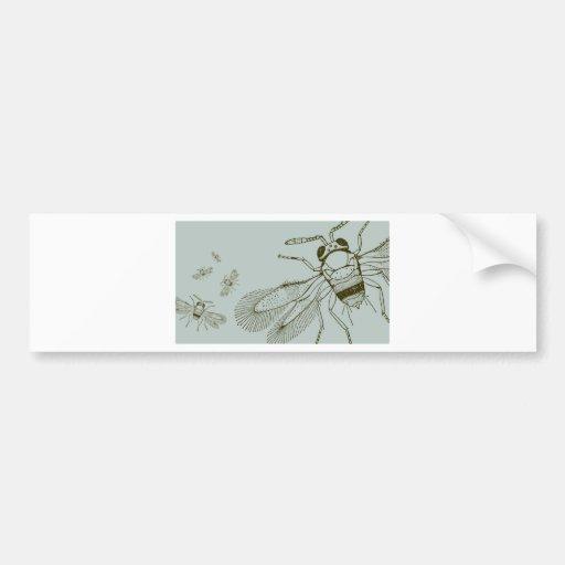 Wasps, Aspidiotiphagus Citrinus Bumper Stickers