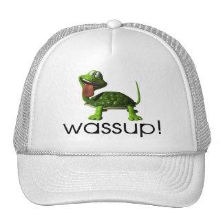 Wassup Turtle Cap