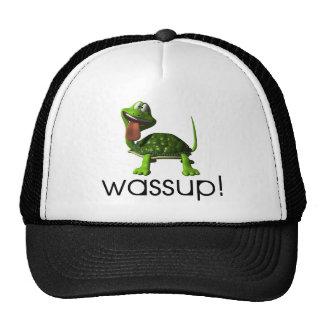 Wassup Turtle Mesh Hat