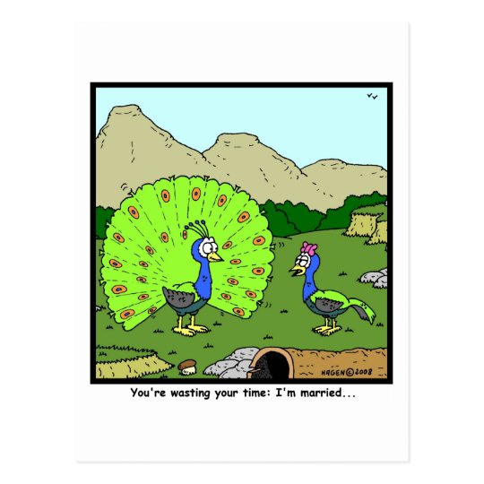 Wasting your time: Peacock Cartoon Postcard