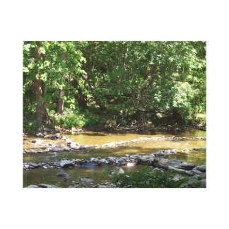 Watauga River Canvas Print