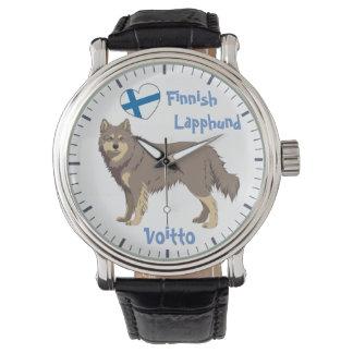 Watch Finnish Lapphund lilac Lapinkoira