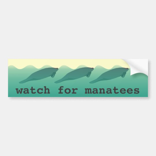 Watch for Manatees bumper sticker