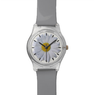 Watch - May28th - New Daisy on Off White
