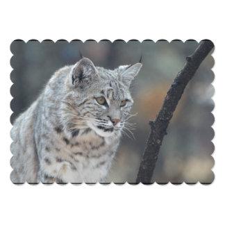 Watchful Bobcat 13 Cm X 18 Cm Invitation Card
