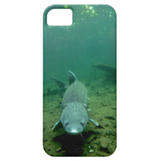 Watching Monster iPhone 5 Covers