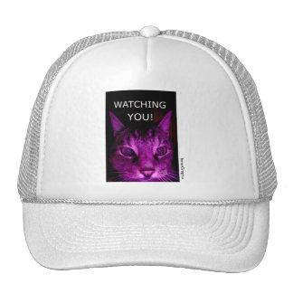 WATCHING YOU! CAT MESH HAT