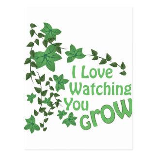 Watching You Grow Postcard
