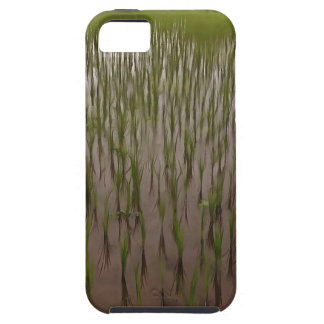 Water and paddy field case for the iPhone 5
