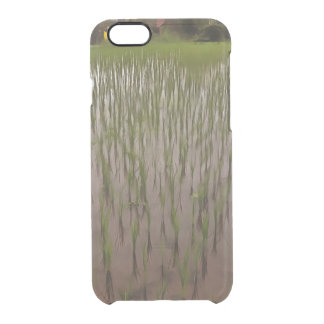 Water and paddy field clear iPhone 6/6S case