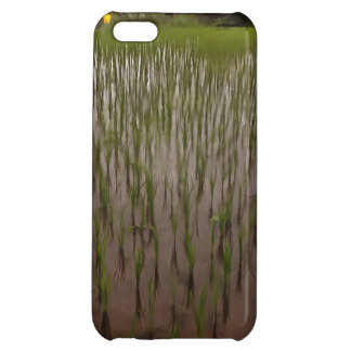 Water and paddy field iPhone 5C covers