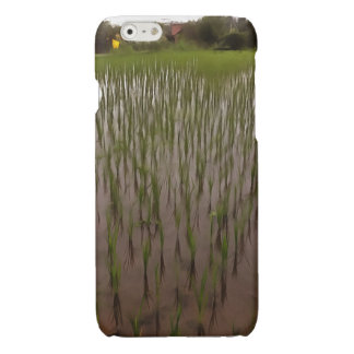 Water and paddy field iPhone 6 plus case