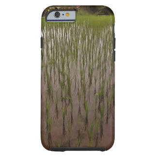 Water and paddy field tough iPhone 6 case