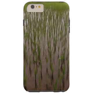 Water and paddy field tough iPhone 6 plus case
