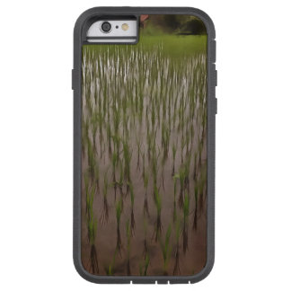 Water and paddy field tough xtreme iPhone 6 case