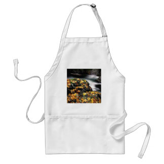 Water Autumn Covered Rock Elk River Apron