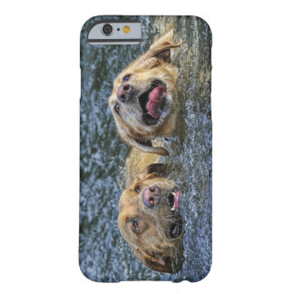 Water Bliss Labs Barely There iPhone 6 Case