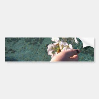 Water Blossoms Bumper Sticker