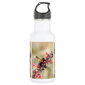 Water bottle with bee on salvia flower 532 ml water bottle