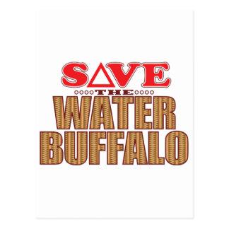 Water Buffalo Save Postcard