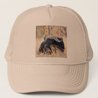 water buffalo trucker hat