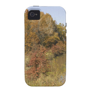 WATER CONTROL DAM AND AUTUMN TREES Case-Mate iPhone 4 CASES