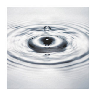 Water drop 4 gallery wrapped canvas