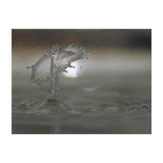 Water Drop Canvas Prints